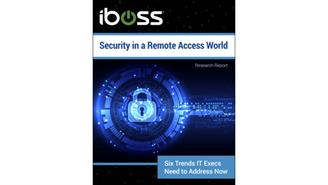 Security in  a Remote Access WP